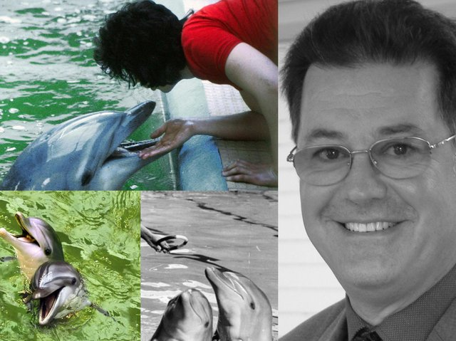 The man who trained dolphins, penguins and sea lions at a South Elmsall pool, David Holroyd