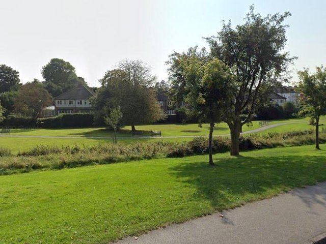 The incident happened near the beck in Springhead Park.