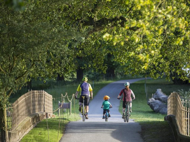 Nostell is launching a fun creative competition inviting people to help bring alive its many treasured spaces. Pictured is the Woodlands and Trails world at Nostell.