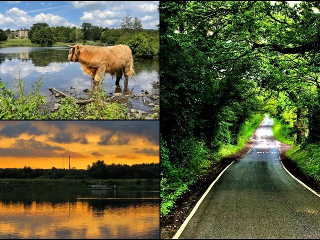 Bright colours were on the minds of Wakefield's photographers this week, as they set out to enjoy the great outdoors.